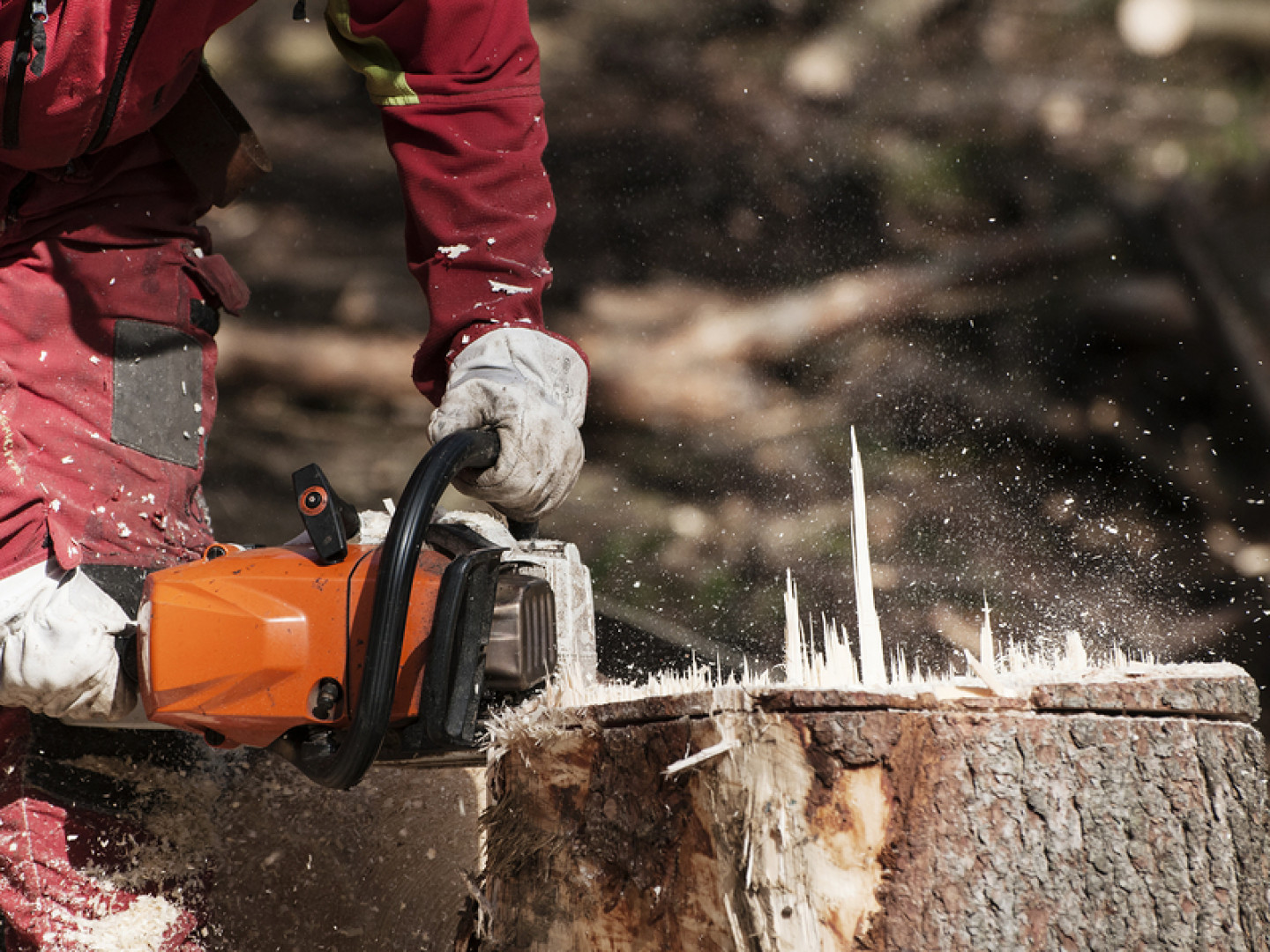 Don't leave unsightly stumps on your property